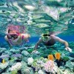 Vallarta Yacht Company - Snorkeling