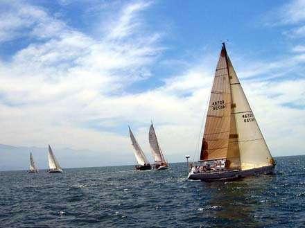 sailboat-regatta-in-Puerto-Vallarta